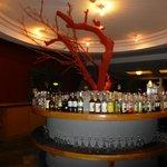 Barra Vip Lounge
