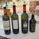 Fantastiska viner och olja från deras gård