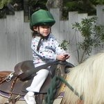 Grandbaby riding a pony!  She LOVED doing this!