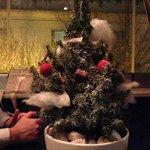 Το μεγαλο γλυκο! Χριστουγεννιατικο δεντρακι με διαφορα γλυκισματα επανω τα οποια..χλαπακιαζεις!