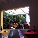 live brazilian music and nice green plants wall