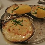 Sea Scallop Gratinees