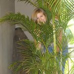 09 Hinding in the palmtree
