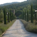 The beautiful Baroncino Drive