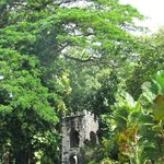 Romney Manor-Caribelle Batik