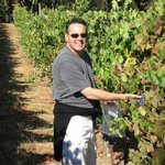 Touring the vineyard