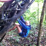 Playing in the rainforest around the hut!