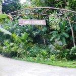 Sabai Corner