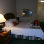 King Room - Hilton Garden Inn