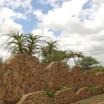 Zulu Nyala resort