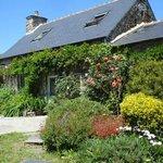 """jardin du gite """"le cottage"""" l'été"""
