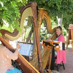 Music in the gardens - Watercolor Harps