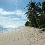 Palm Grove Beach