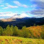 Mount St. Helens from Spirit Lake Memorial Highway