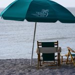 Umbrellas and chairs- for a fee- on the beach