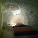 Polar bear cave