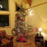 Christmas tree in main room