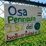 The Osa Peninsula contains 2.5% of the worlds biodiversity! Incredible!