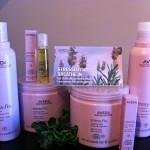 STRESS FIX by AVEDA-The all natural stress relief line