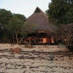 individual bungalows are tucked away and private
