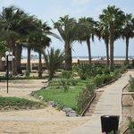 um dos vários caminhos de acesso á praia