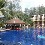 piscine et bar