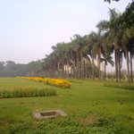 Parliament Garden