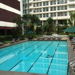 Pool Partnerhotel Federal Hotel