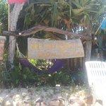 Dee Dee Beach House