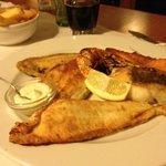6 soorten vis