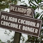 Crocodile Pond!!