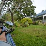 Relaxing in the beautiful garden :)