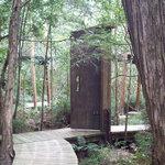 Giants Door