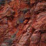 Long Canyon Trail #122, Sedona, Arizona
