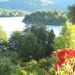 Bellevue y sus rosas