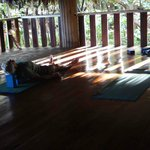 natura cabana yoga temple
