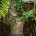 Stairs and path leading to our balcony.