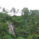 waterfall near the hotel