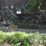 Memorial garden (Anglican church)