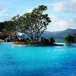 lovely pool but sun loungers always taken