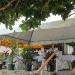 Flamboyant Beach Restaurant