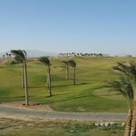 Golf course - note the wind !