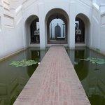 walkway between the fish ponds
