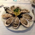 Very fresh oysters
