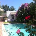 best place to be in hot summer of Stellenboosch