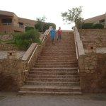 السلالم كثيرة فى طريق ال