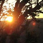 tolle Sonnenaufgänge