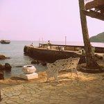 aquario y mar