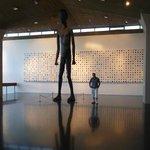 Detalle de la amplitud y originalidad del museo