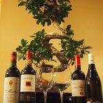 Quelques vins de notre cave...